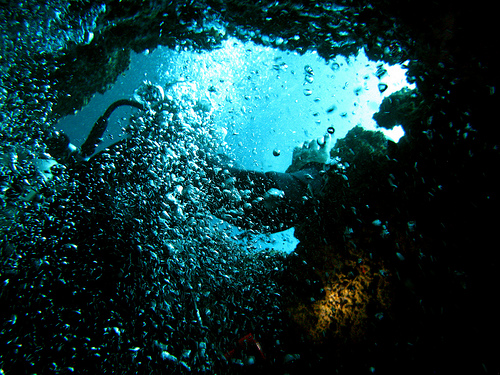 Cave Dive Sites