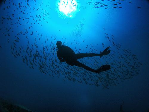 Scuba Diving Insurance