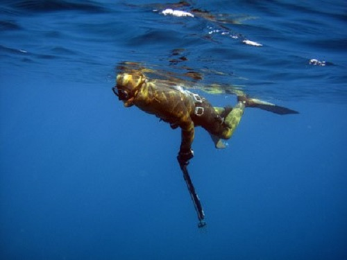 Spearfishing 1